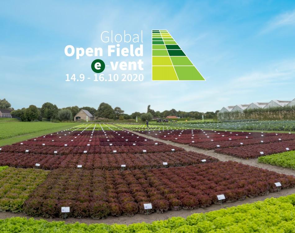 Rijk Zwaan Global Open Field e-vent Fijnaart